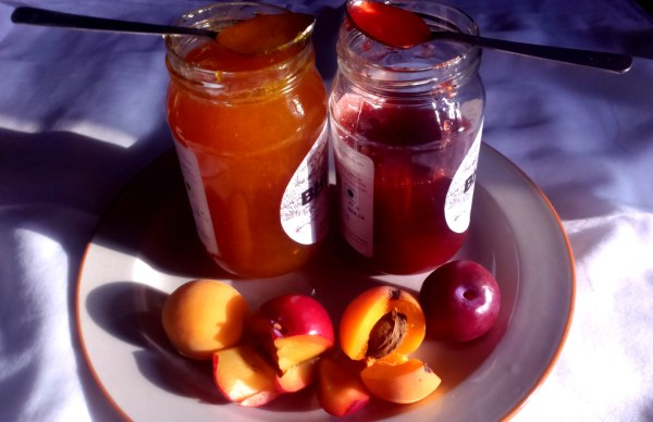 Plum and Apricot Preserve