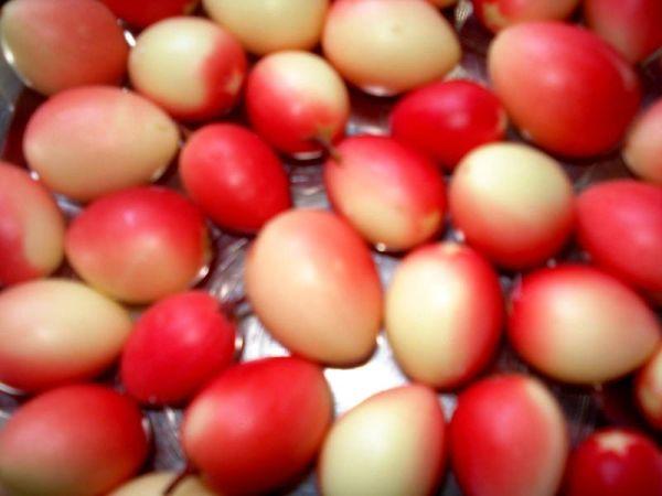 800px-karonda_fruit1
